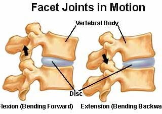 Movement of facet joints relating to pain between the shoulder blades